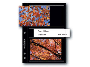 Print File 35-4M-BLK 3-1/2x5 Print Preservers (25 Pages)