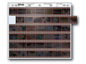 Print File 35-6HBXW 35mm Negative Preservers (100 Pack)