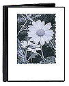 Pioneer HC-146F Photo Album - Flower Designs