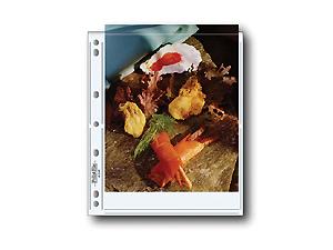 Print File 810-2P Print Preservers (25 Pack)