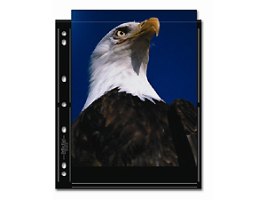 Print File 810-2S-BLK 8x10 Print Preservers (25 Pages)