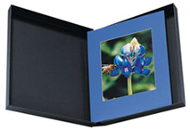 Century Elite Box 8x10x2 (Black Interior)