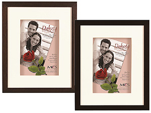 MCS 8x10 Dakota Shadow Box Frame