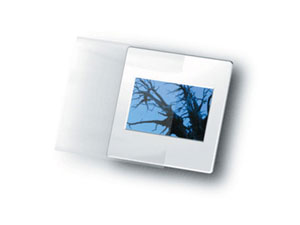 Print File 35mm Slide Sleeves (100 Pack)
