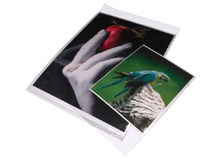 Print File Re-sealable Photo / Art Bags (100 Pack)