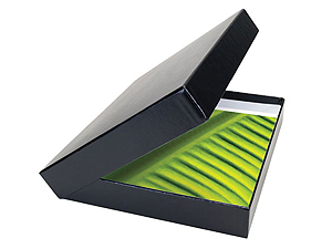 Get Smart Buckram Portfolio Box 8x10x2