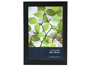 MCS Black Arlington Picture Frame 11x17
