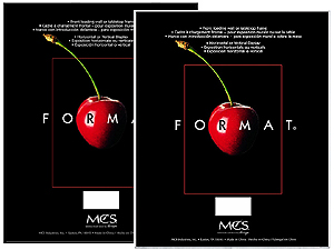 MCS Format Frame 8x10