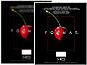 MCS Format Frame 8-1/2x11
