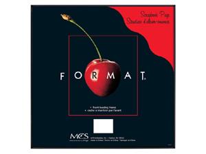 MCS Format Frame 12x12 Black
