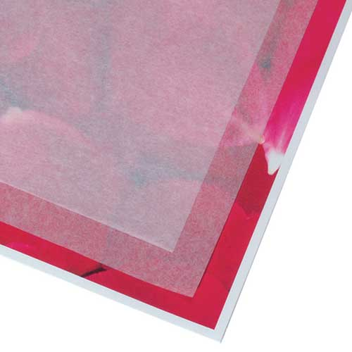 Unbuffered Acid Free Tissue Paper 15x20 - 100 sheets