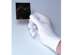 Print File Nylon Lab Gloves - Small/Medium
