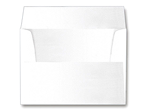 Envelopes For 4x6 Folders and 5x7 Gatefold (25 Pack)
