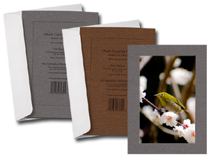 Metallic Lustre Simplicity Photo Insert Greeting Cards (10 Pack)