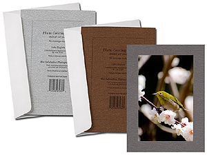 Metallic Lustre Simplicity Photo Greeting Cards (10 Pack)